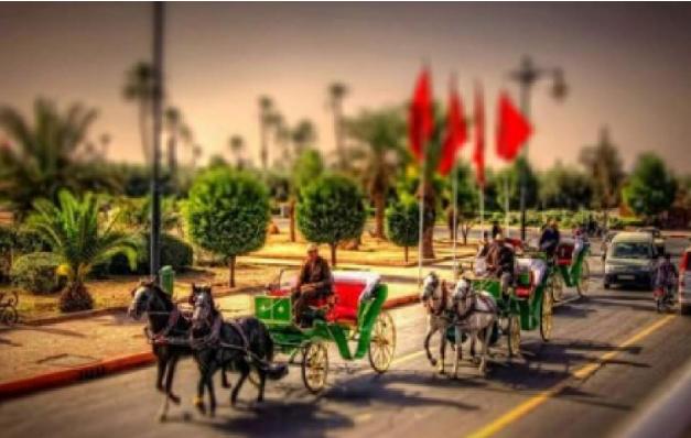 مراكش تستضيف قمة الاتحاد الأوروبي – إفريقيا للأعمال يومي 28 و29 نونبر