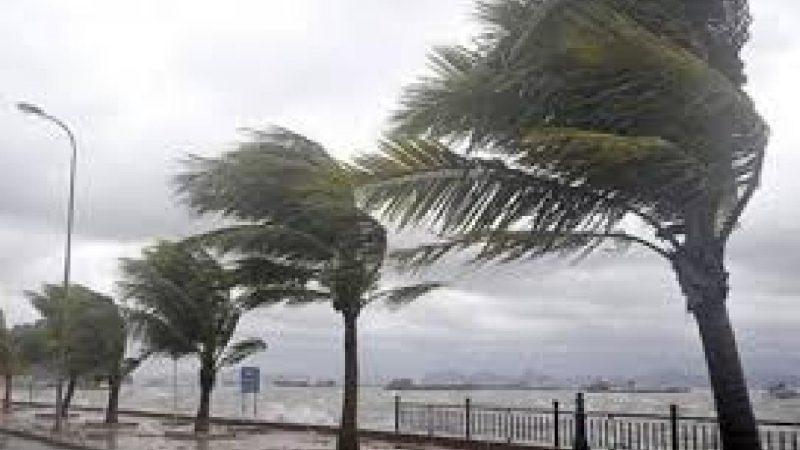 مديرية الأرصاد الجوية الوطنية  تعمل على تطوير نظام الإنذار الرصدي وجودة التنبؤات الرصدية