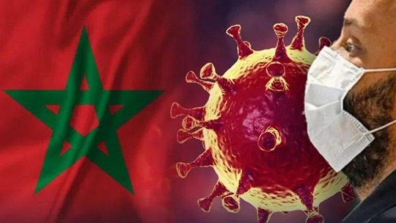 المغرب يسجل 2462 حالة شفاء من كورونا مقابل 42 وفاة