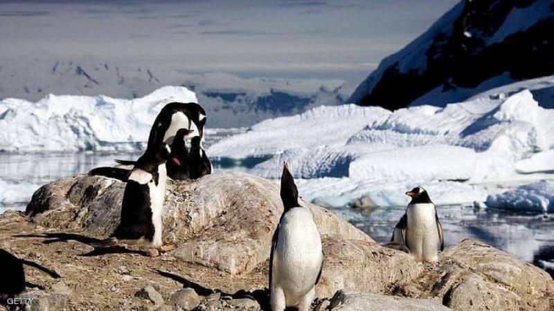 شبه جزيرة أنتاركتيكا تسجل حرارة لم تبلغها منذ عقود
