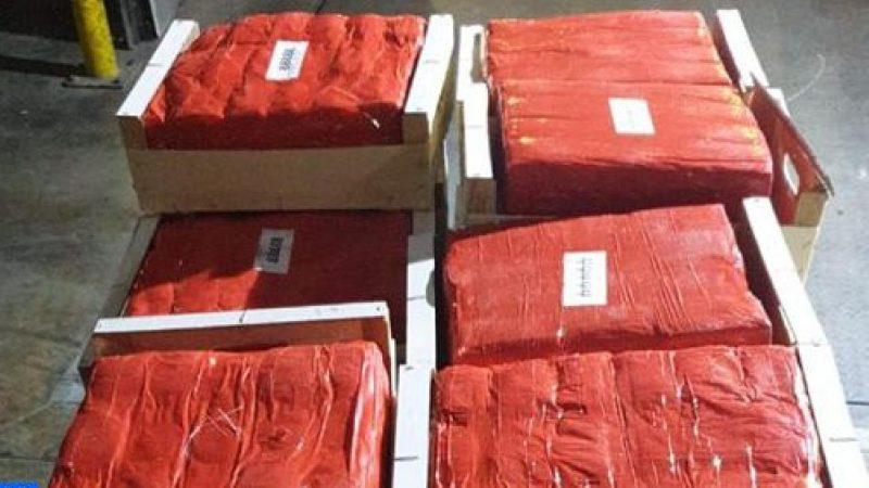 اجهاض عملية للتهريب الدولي للمخدرات وحجز أزيد من 11 طنا