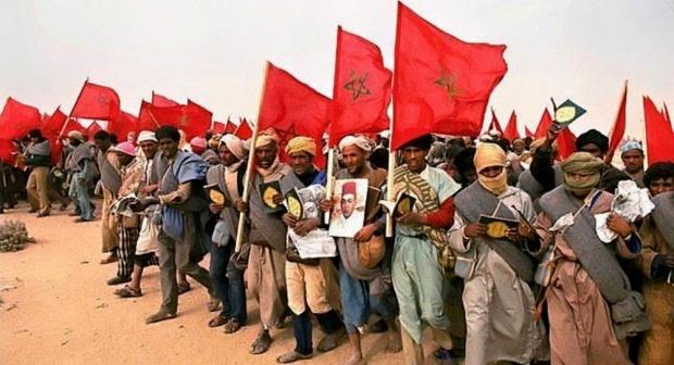أسرة الحركة الوطنية والمقاومة وجيش التحرير تخلد ذكرى المسيرة الخضراء بجهة مراكش اسفي