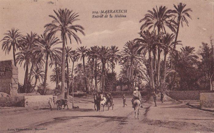 فليكس : ذاكرة بصرية من الزمن الجميل لمراكش