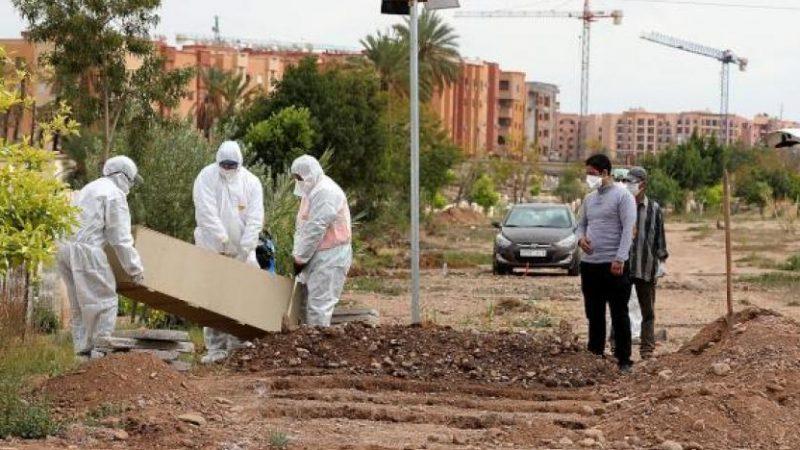 50 طبيبا يفارق الحياة بالمغرب بسبب كورونا