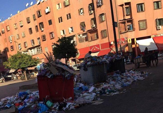 تراكم النفايات .. خطر صحي وبيئي يهدد سكان أحياء المسيرة