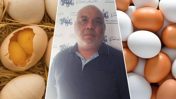 اعتقال عاملة من أجل سرقة 16 بيضة من شركة النائب البرلماني الزعيم