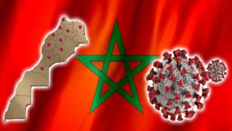 فيروس كورونا.. 774 إصابة جديدة مقابل 933 حالة شفاء و14 وفاة خلال 24ساعة الماضية
