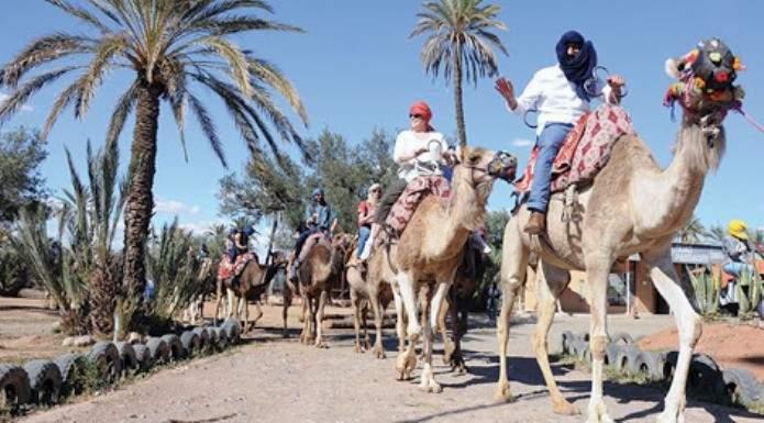 """محرك السفر """"بومرونغ"""" يتيح مجانية تأجيل حجوزات شهر يناير لمراكش ووجهات أخرى"""