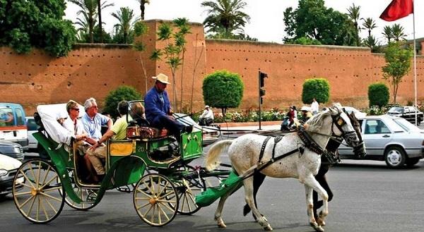 فاعلون سياحيون من المغرب وإسرائيل يناقشون سبل جذب السياح بين البلدين