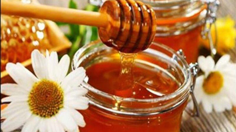 تعرف على أغلى عسل في العالم