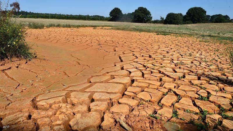 """الجفاف يكبد أوروبا خسائر """"زراعية"""" كبيرة"""
