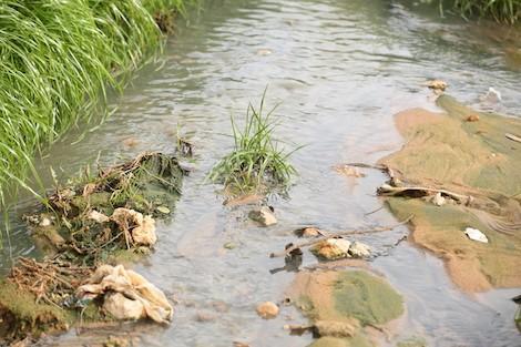 بحث سبل انجاز محطة لتصفية المياه العادمة وإعادة استعمالها في السقي بمولاي براهيم