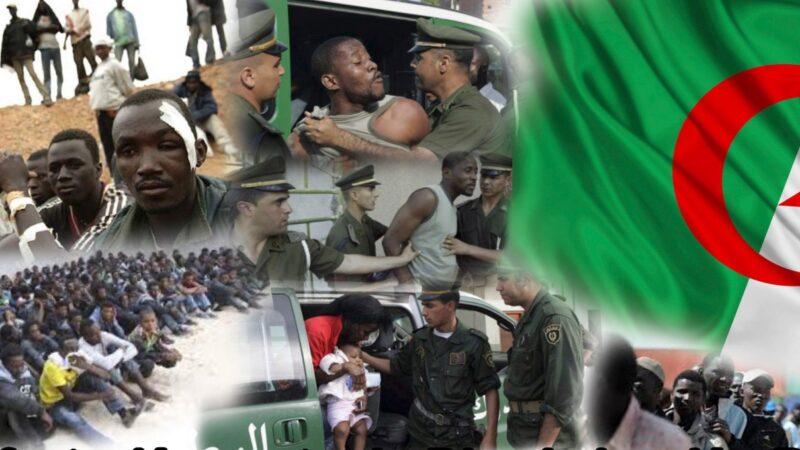 إدانة أممية للجزائر في عمليات القتل خارج القانون والتعذيب الواقع في تندوف
