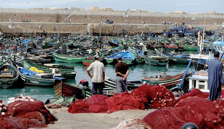 ارتفاع في تسويق منتجات الصيد بأسفي
