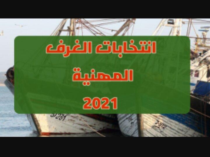 انتخابات أعضاء الغرف المهنية .. مجموع عدد الترشيحات المقدمة بلغ 12 ألفا و383 ترشيحا.
