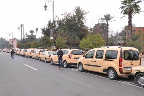 سائقو سيارات الأجرة بمراكش يقررون التصعيد ضد القرار الحكومي