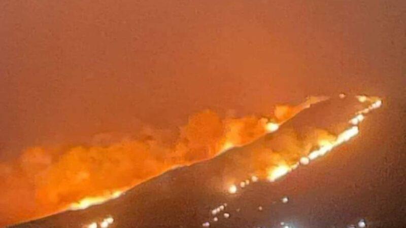 دراسة: دخان حرائق الغابات يزيد من إصابات ووفيات كورونا